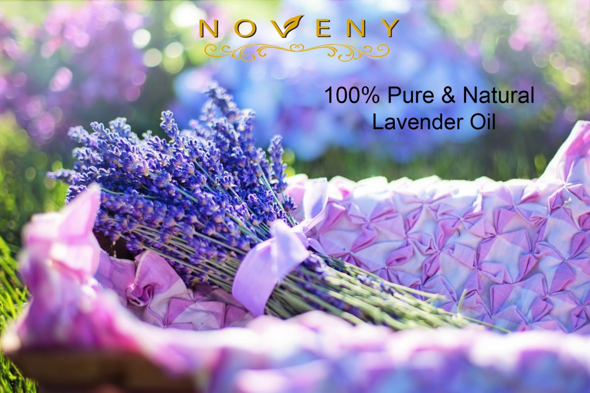 IMPORTANT BENEFITS TO KNOW ABOUT LAVENDER OIL