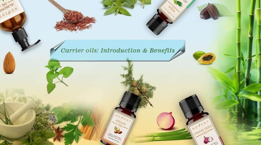 Cold-Pressed Carrier Oil