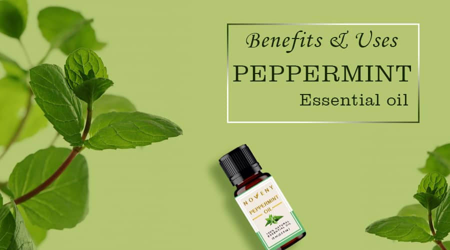 Peppermint-Oil-benefits-uses